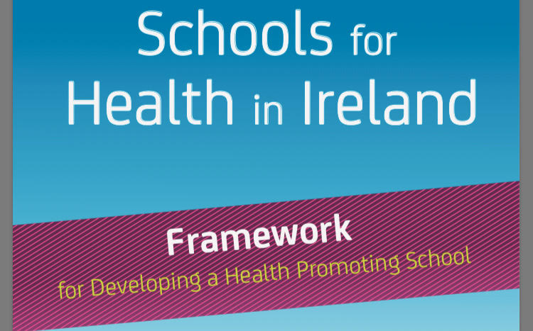 Schools for Health in Ireland